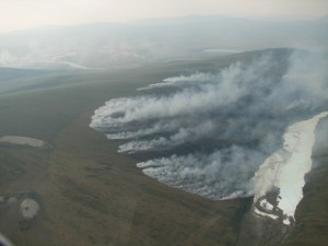 This is smoke from one of the 90 wildfires that were burning in Alaska in June/July, 2013. Smoke can cause lung irritation and damage in dogs as well as inflammation that can result in life-threatening pneumonia and permanent scarring of tissues. Photo attributed to AlaskaNPS on flickr taken June 26, 2013