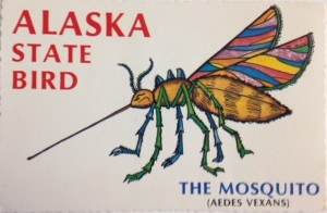 "Alaska State Bird: The Mosquito. Vintage postcard. ""In Alaska, the mosquito is the state bird, or so the joke goes because of the size and numbers of the bloodsucking insects"" Swarms of these huge bloodsucking mosquitoes bite and torture chained Iditarod sled dogs."