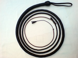 Bullwhip. Bullwhips are used on Iditarod sled dogs. Photo attributed to AldoZL on flickr.